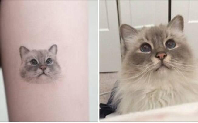 Tatuagem realista ao lado de foto de gato de Daria