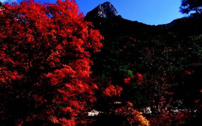 No Guadalupe Mountains National Park fica o ponto mais alto do Texas