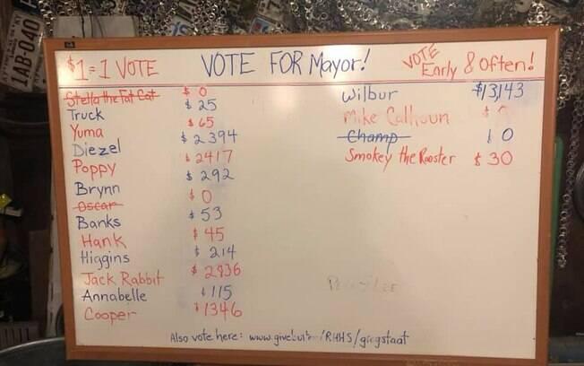 Resultado da votação para prefeito de Rabbit Hash