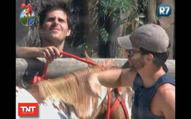 Thiago ajuda Marlon durante a escovação da égua