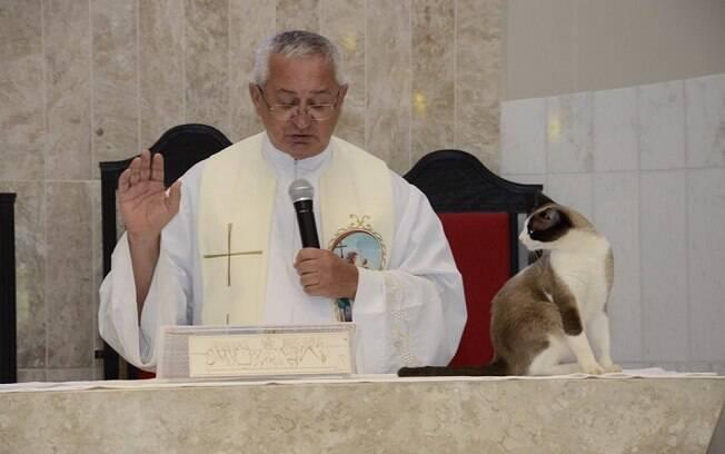 O gato Júnior subiu no altar da paróquia durante o batizado