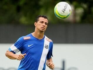 Leandro Damião foi contratado pelo Santos em dezembro de 2013