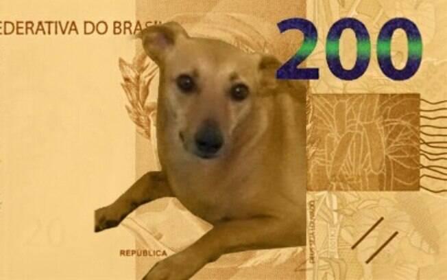 Internautas especulam como será cédula de R%24 200