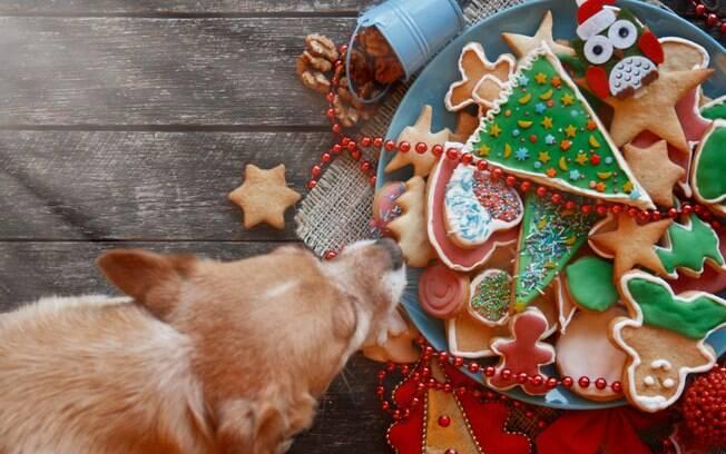 Aprenda a fazer uma ceia natalina especial para o pet