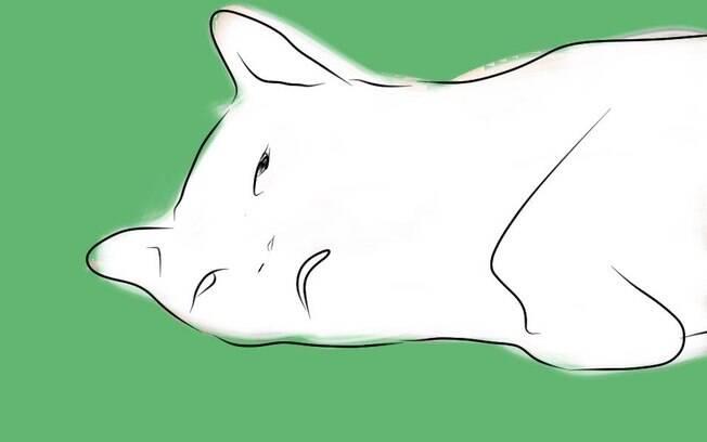 Desenho de gata inspirado em foto