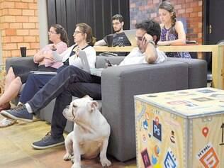 Sentindo-se em casa. Até os cães dos funcionários são admitidos no ambiente de trabalho