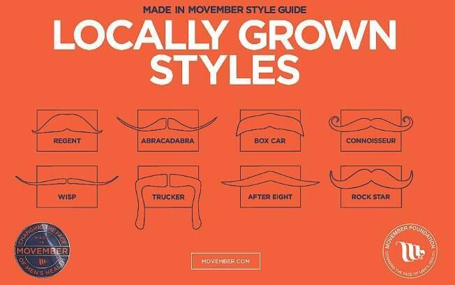 Os diferentes tipos de bigode