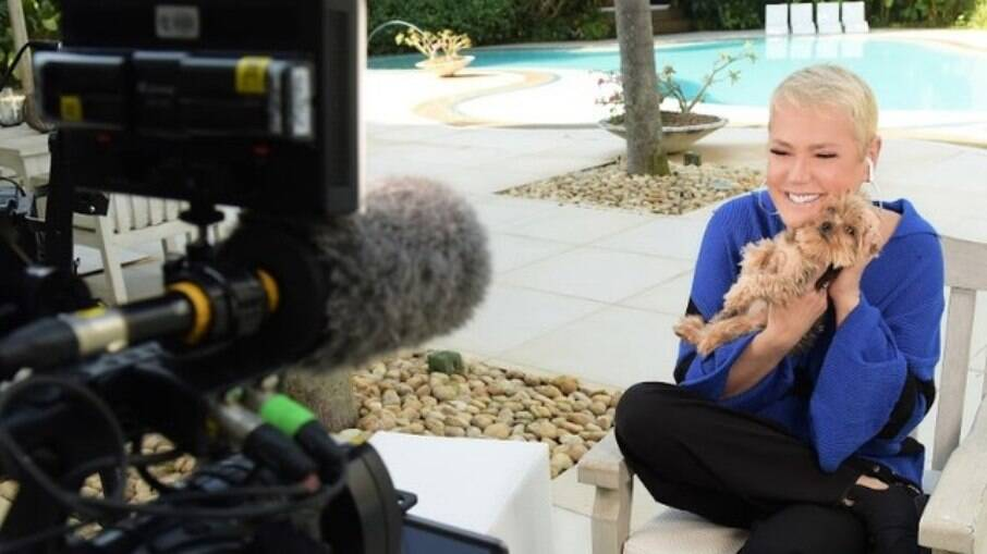 Xuxa vai apresentar reality