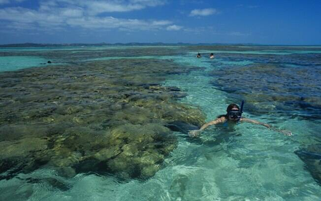 Peixinhos coloridos e corais podem ser vistos no snorquel ou no mergulho com cilindro