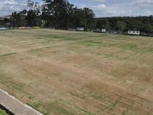 Expectativa é de que em até 15 dias o gramado do campo principal esteja totalmente recuperado