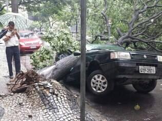 Árvore cai em cima de carro e interdita parcialmente a Afonso Pena