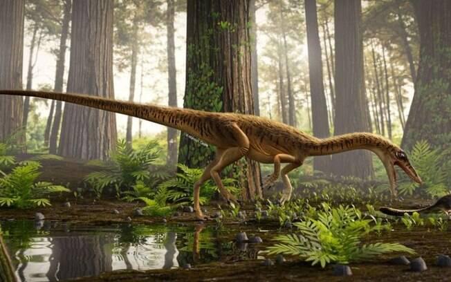 O dinossauro seria um antepassado do tiranossauro rex e do velociraptor