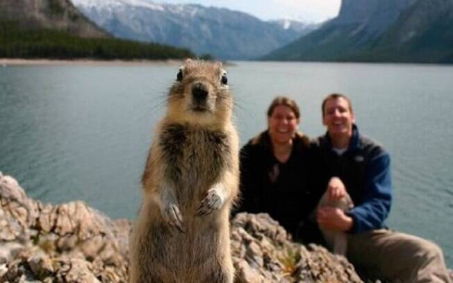 Um esquilinho em destaque enquanto as pessoas que seriam de fato fotografadas dão risada.