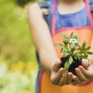 Jardinagem com as crianças: veja esta e mais 30 ideias para curtir com os filhos