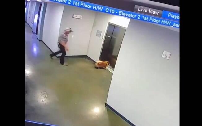 Cão em perigo e homem correndo para salvá-lo