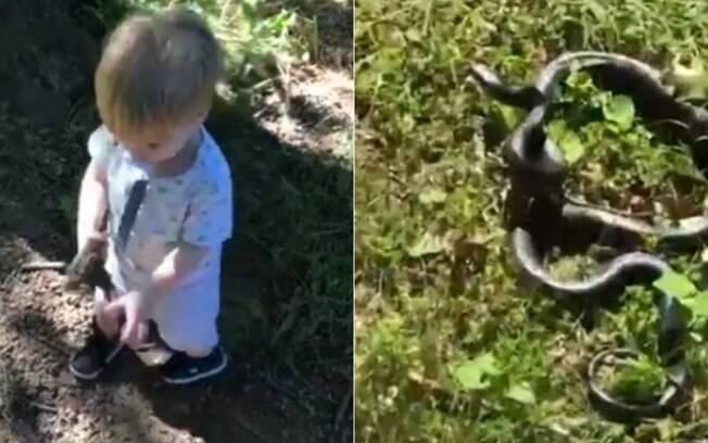 A criança brincava com o cachorro e pegou a cobra pensando ser um graveto
