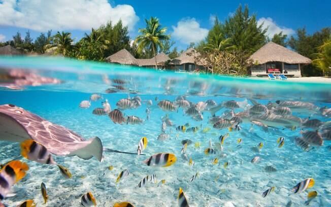 O Tahiti é um destino que encanta por possui praias paradisíacas, mas também conta com outras atrações para os turistas