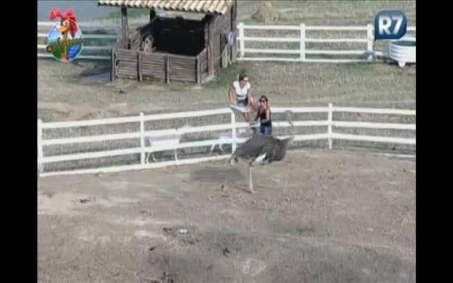 Depois de correr, Joana decide pular a cerca. Raquel, que diz não conseguir saltar a proteção, vai em direção ao portão