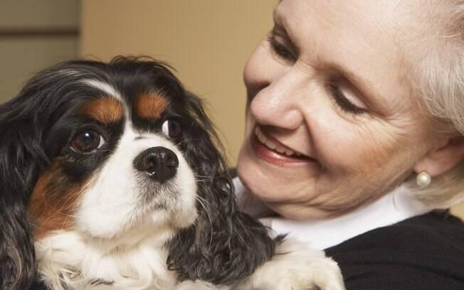Treinamento dos cães dura cerca de nove meses