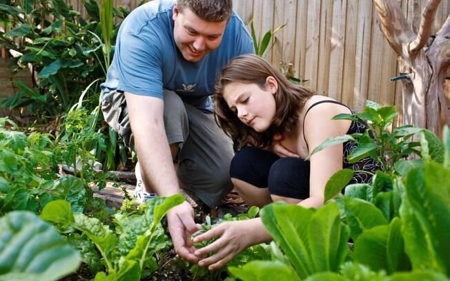 Já pensou em ter sua própria horta em casa? Algumas ervas podem ser cultivadas até em espaços pequenos