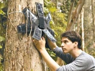 Aletas. Ao contrário da imagem de divulgação, os dispositivos são instalados no alto das árvores, de forma discreta