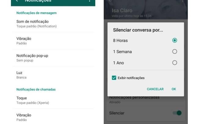 Na página de contatos, o WhatsApp permite que usuário personalize as notificações de cada contato ou grupo, e também que silencie contatos como já é possível com grupos. Foto: Reprodução