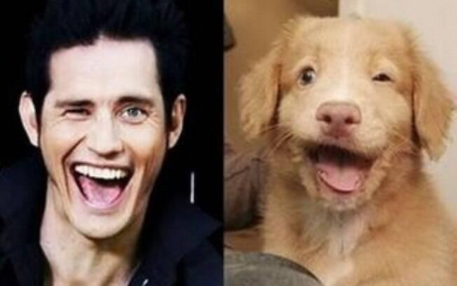 Muitos cães possuem uma grande semelhança com os donos