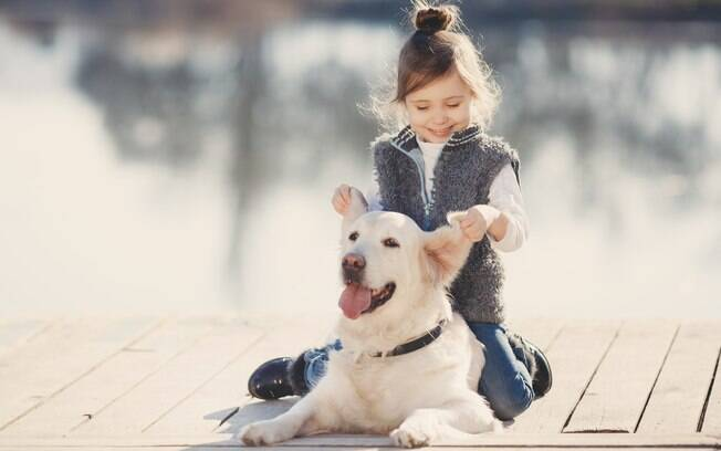 O Labrador é uma das raças de cachorros para crianças mais indicadas
