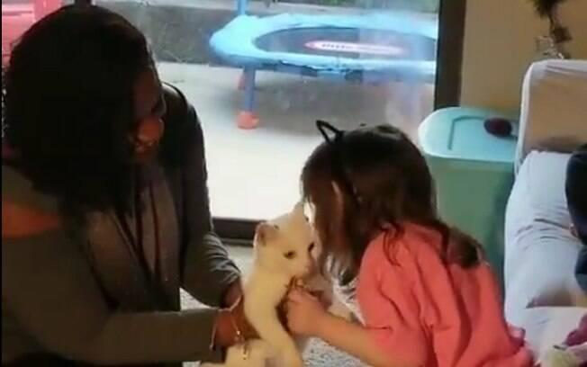 Menina com deficiência visual tem reencontro emocionante com sua gatinha desaparecida