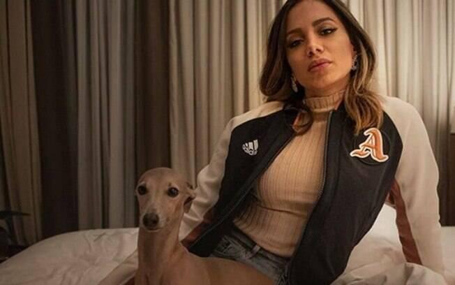 Conheça Plínio: o cão da cantora Anitta que é apaixonante e super famoso na web