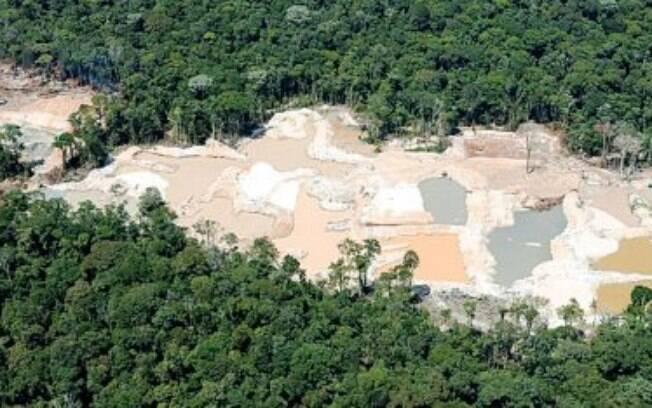 Se dependesse do capitão reformado, a Amazônia inteira seria garimpo ou terra destinada ao gado. Sorte da floresta que existem os indígenas.
