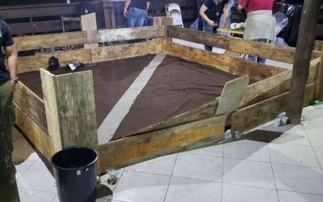 Lutas entre os cães eram realizadas em Mairiporã