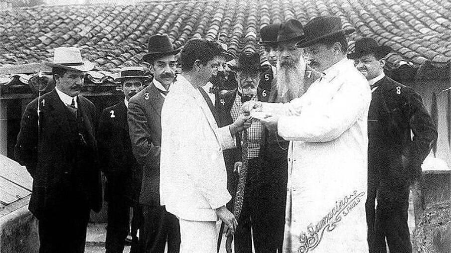 Vital Brazil (de branco, usando chapéu) demonstra extração de veneno de cobra para a produção de soros