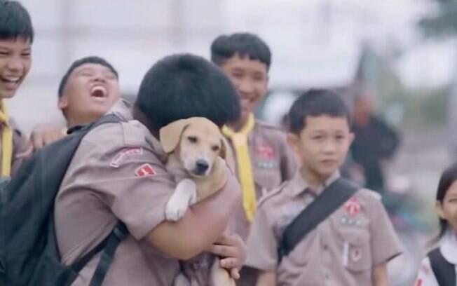 Animais de rua foram abraçados pela primeira vez e a reação foi encantadora