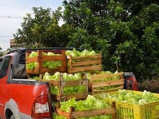 Ação no Rio de Janeiro atesta que é possível ter acesso a alimentos frescos e orgânicos