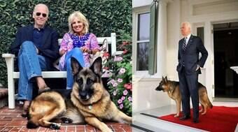 Morre aos 13 anos Champ, o cachorro do presidente dos EUA