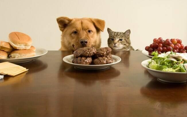 Evite oferecer restos de alimentos humanos para o pet