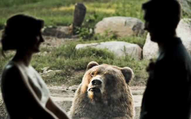 Urso aparece em foto de casal tendo reações engraçadas durante o casamento