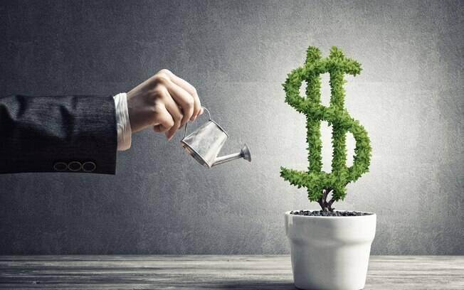 Investimentos de longo prazo: veja quais são as melhores opções do mercado