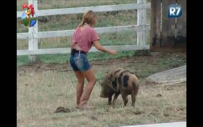Raquel tenta levar porco de volta ao chiqueiro, mas bicho não obedece