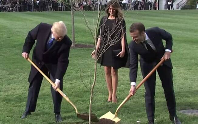 Presidentes dos Estados Unidos e França plantaram árvore no jardim da Casa Branca como símbolo da união entre os países, mas árvore sumiu
