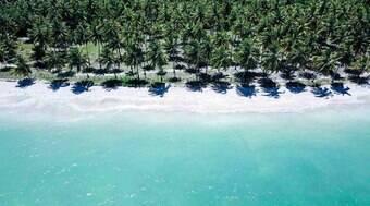 Confira 5 motivos para você visitar as praias de Maragogi, em Alagoas