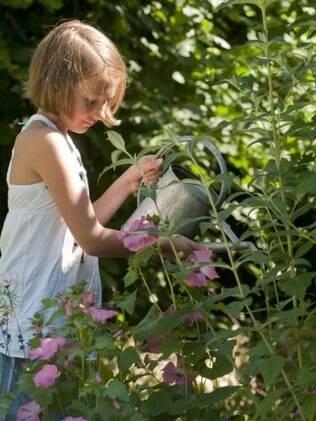 Cuidar das plantas em casa ensina as crianças a amar a natureza