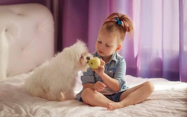 A companhia do animal de estimação ajuda a reduzir o medo que as crianças sentem do escuro e da solidão a noite