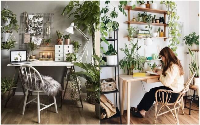 home office com plantas