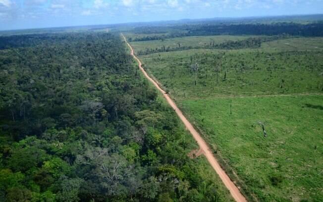 Imagem de área desmatada em Novo Progresso, no Pará. Cerca de 580 mil campos de futebol são derrubados anualmente no Brasil para serem convertidos em pastagem, diz TRASE