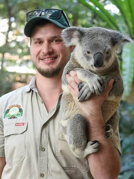 Você pode tirar foto com um coala no Santuário de Coalas de Lone Pine
