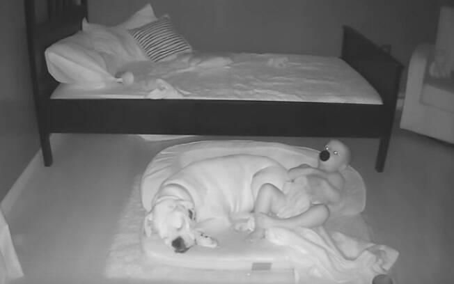 Esse garoto indo dormir com o cão no meio da noite é a coisa mais fofa que você vai ver