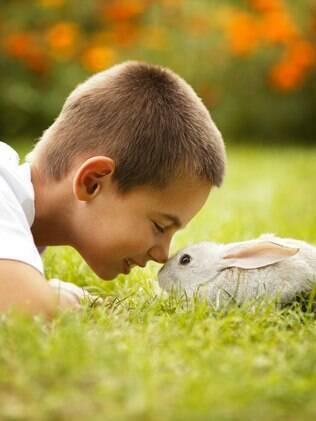 A interação da criança com os animais é muito importante para o desenvolvimento