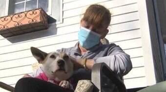 Após 5 anos desaparecida, cadela reencontra a dona nos EUA